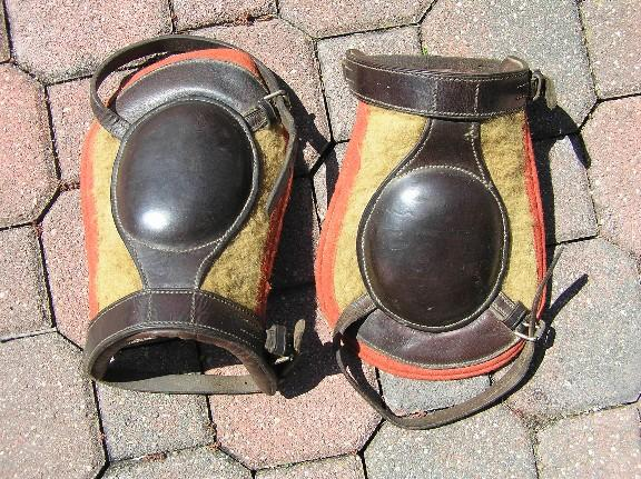 horse knee pads